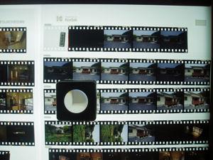 P5080008s.jpg